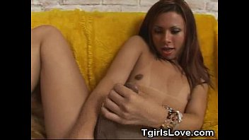 cam 9 inch cock on tranny Tspussyhunters shemale to female